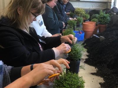 Topiary Craft Workshop