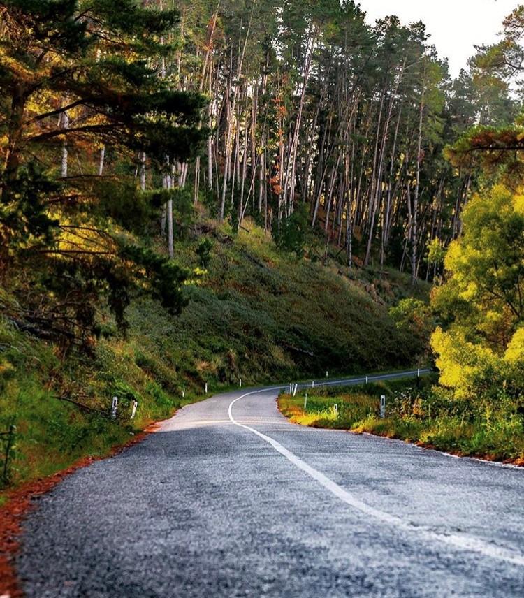 Adeliade-Hills-roads-benheide photography