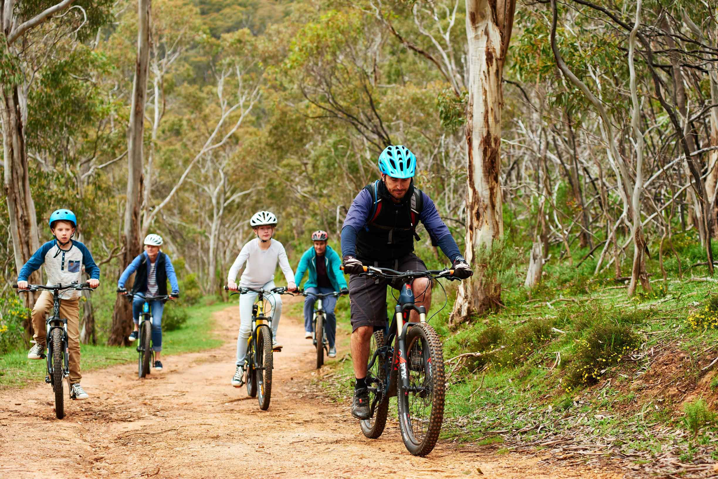 Cycling in Cleland Conservation Park