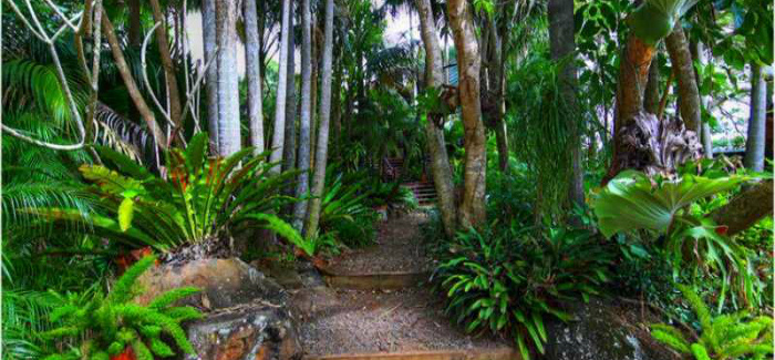 Maleny Tropical Retreat Gardens