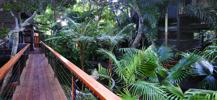 Shambhala Byron Bay rainforest canopy cottages book online | Alluxia.com