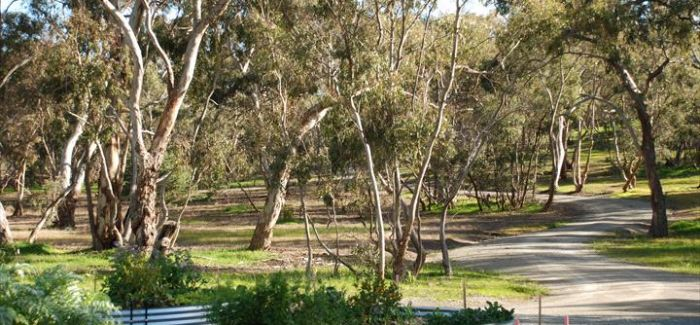 Thorn Park by the Vines - Clare Valley
