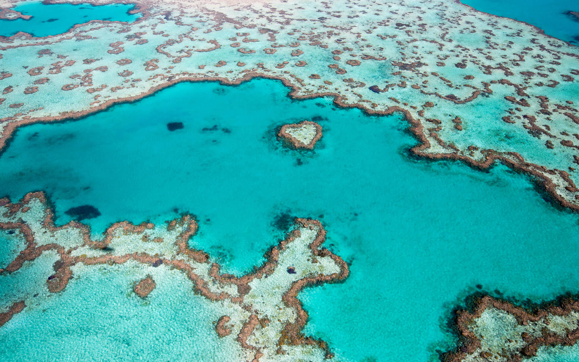 Great Barrier Reef - Queensland