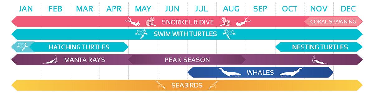Reef Seasonality Calendar