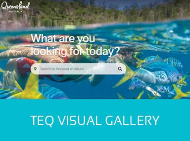 TEQ visual gallery