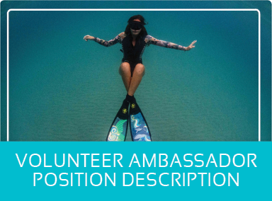 Volunteer Ambassador PDF