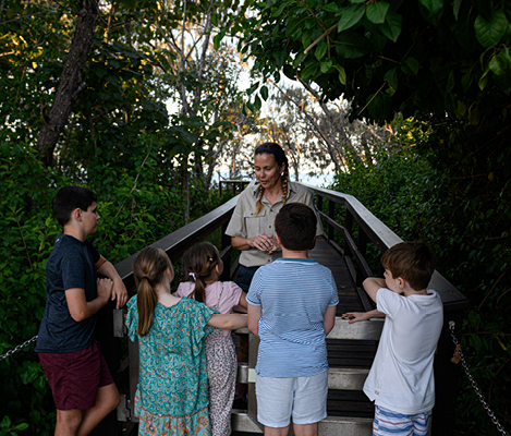 QLD NATIONAL PARKS MON REPOS TURTLE ENCOUNTER