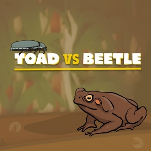 Toad v's Beetle Touring Exhibition