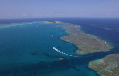 1770reef  Great Barrier Reef Eco Tours