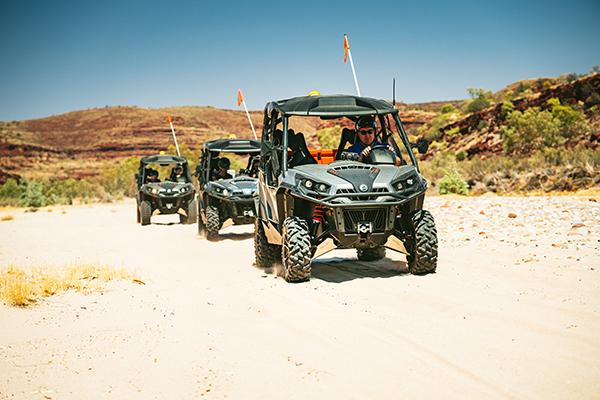ATV 600