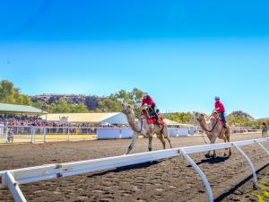 Alice Springs Camel Cup