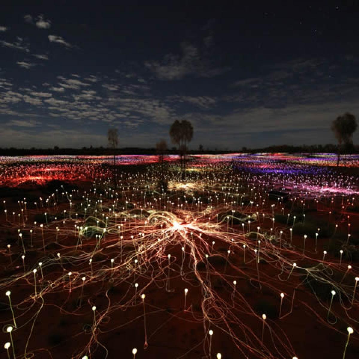 Field Of Light Uluru  Experiences Amazing Design