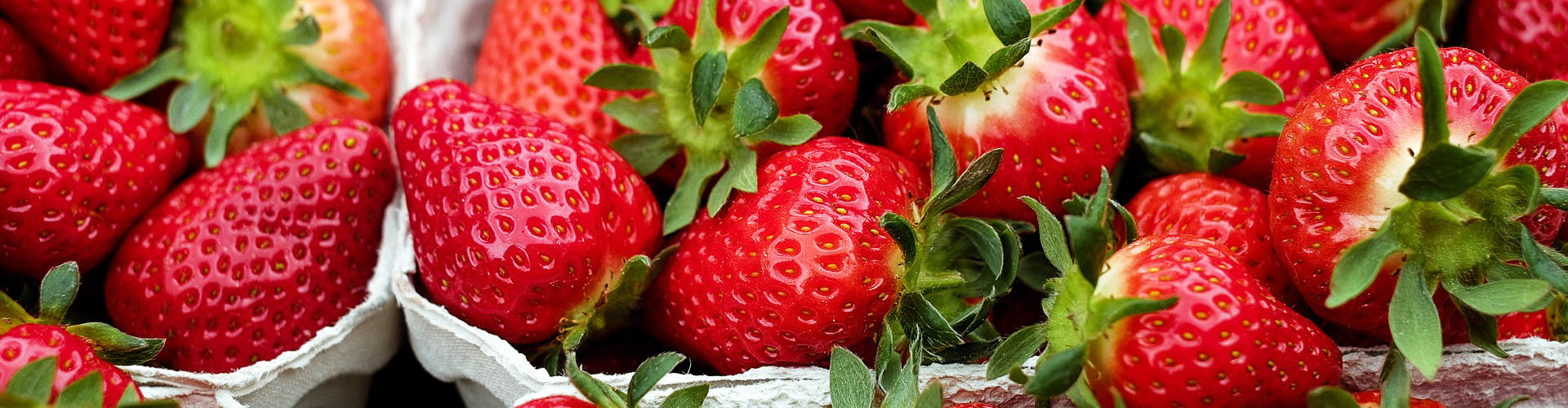 Strawberries local fresh produce Great Western Tiers