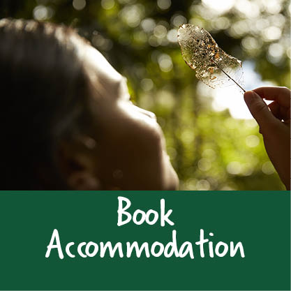 Bookaccommodationpic
