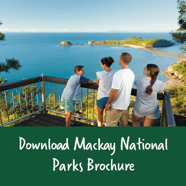 national parks brochure