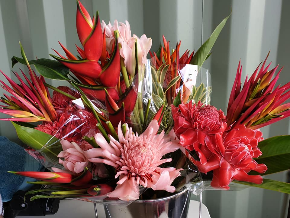 ventons tropical blooms