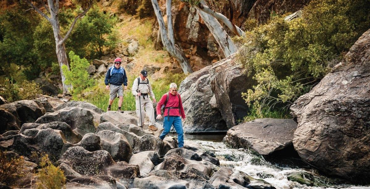 bush walking trails onkaparinga national park mclaren vale fleurieu coast