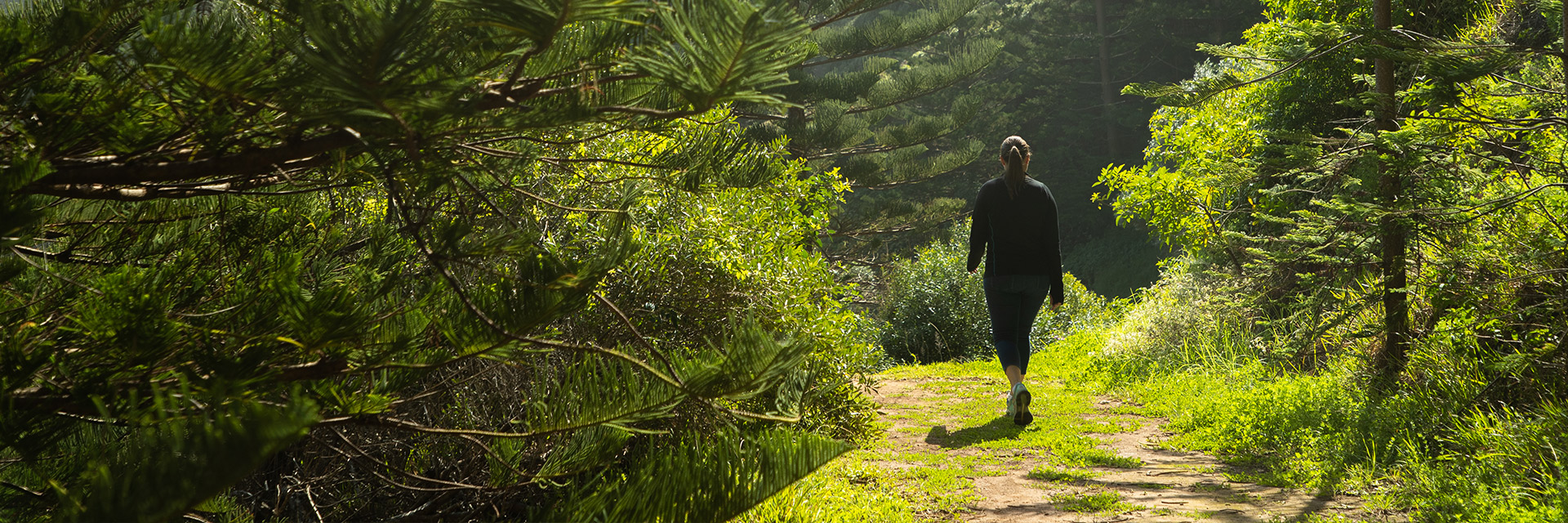 Solo female in exercise gear walks along a worn, grassy path through a forest of Norfolk pine trees and other vegetation
