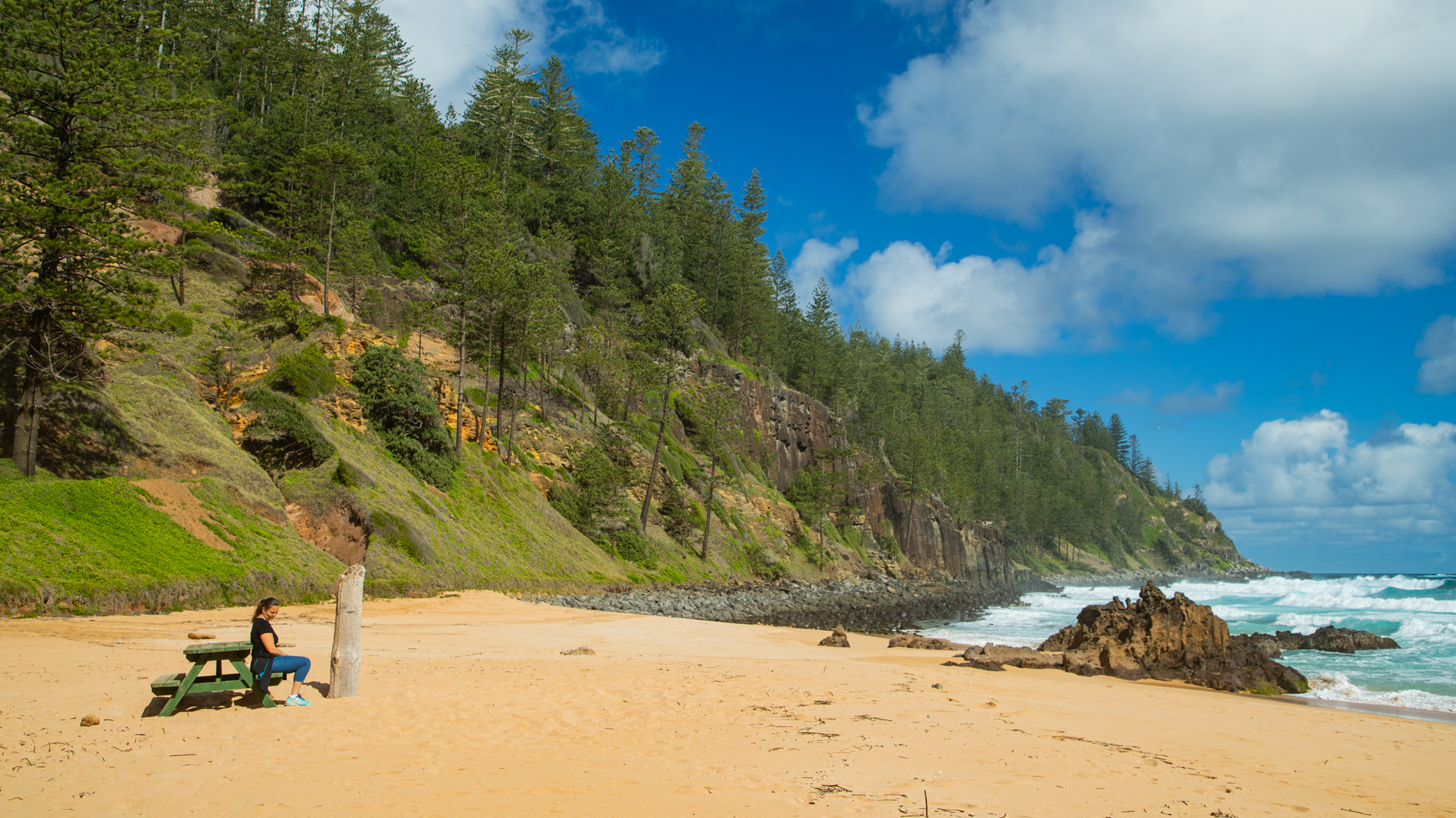 A woman sits at a picnic table set on the sand. Waves come into shore and a pine tree-covered cliff comes down to meet the sea.