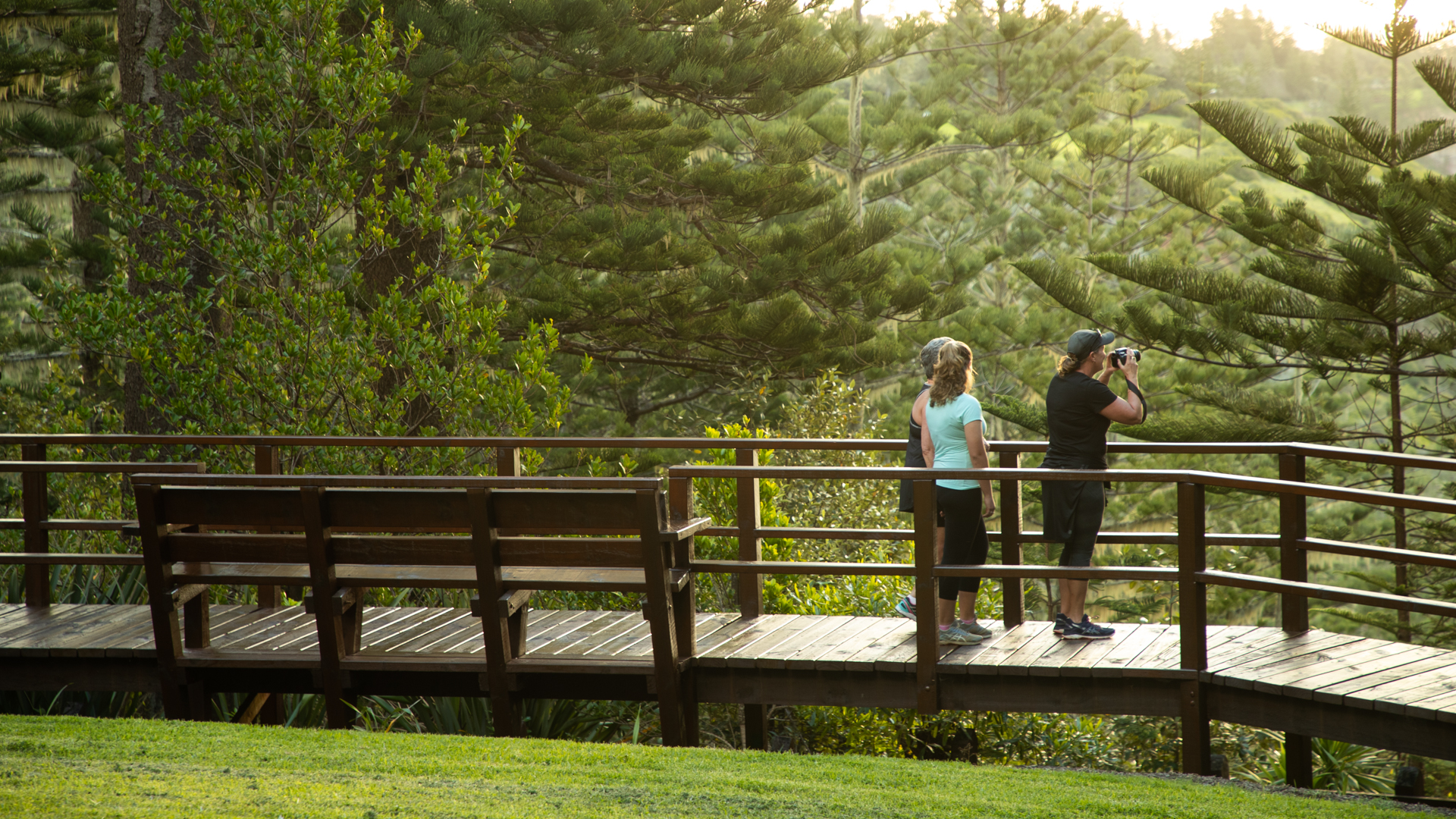 Three women stand on wooden boardwalk, lady on right taking photograph of Norfolk pines and other trees in background.