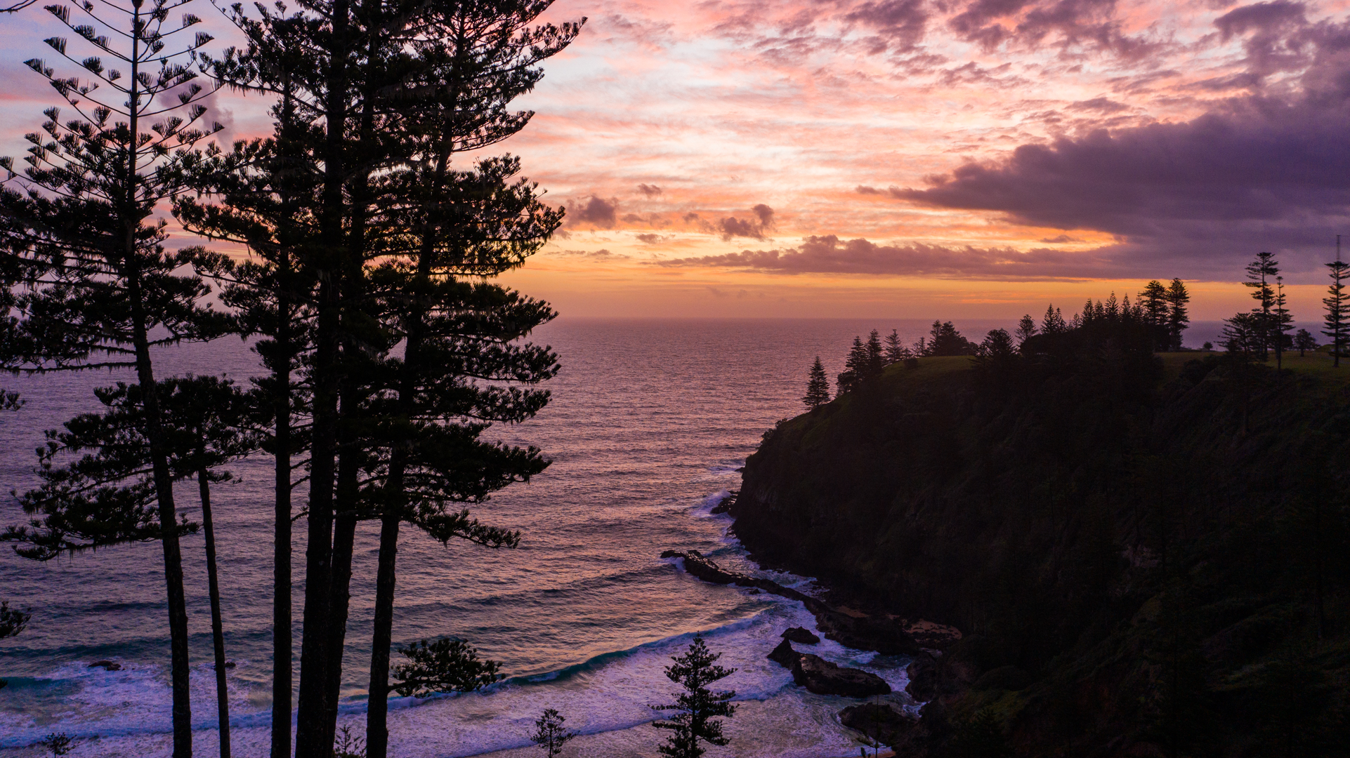 An elevated view of waves rolling towards the base of a cliff as the sun sets over the ocean. Tall norfolk pine trees can be seen growing on the left, as well as in the distance on the top of a cliff.