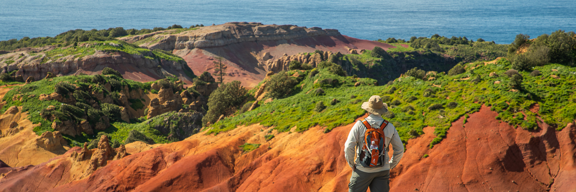 Back view of a man with a backpack looking out over terrain of undulating rocks of a rusty-red colour and dotted with pa