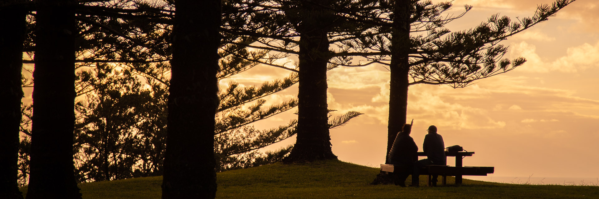 Sun setting through Norfolk pines with silhouette of couple picnicking