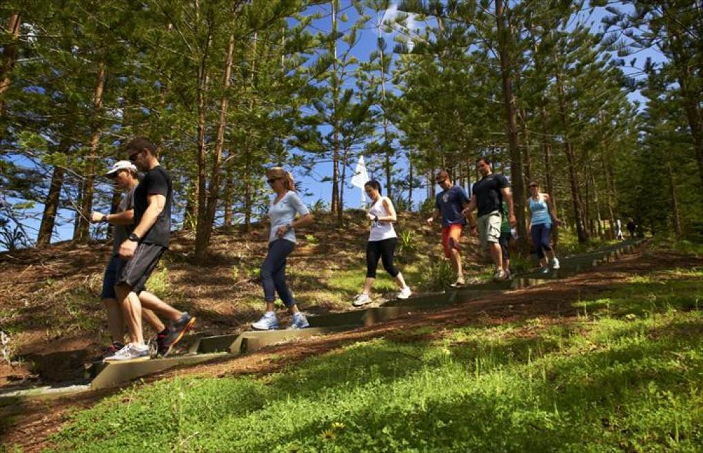 NI Fitness and Health