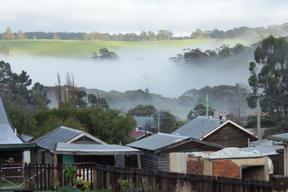 Pemberton morning mist 1