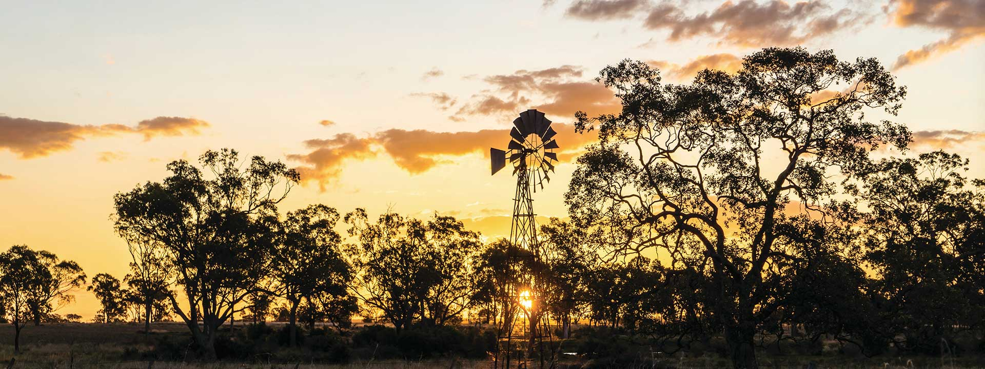 Enjoy a moment of solitude in the Dalby countryside