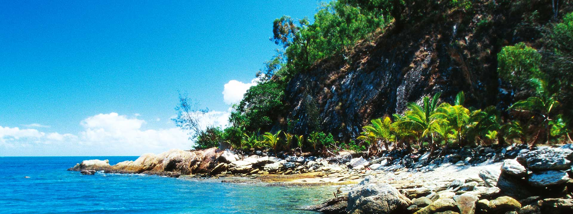 Explore the beautiful waters of Palm Cove