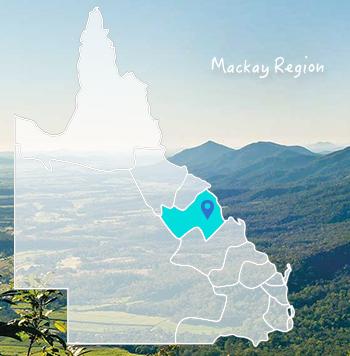 Mackay Region Region Australia