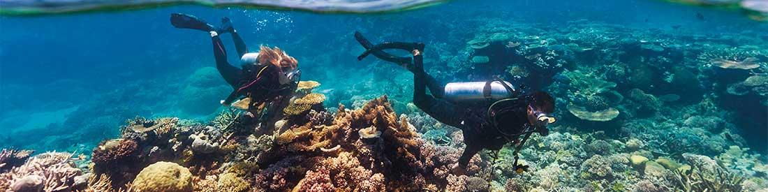 Agincourt Reef