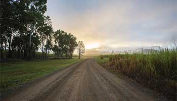 Proserpine Farmstay & Retreat