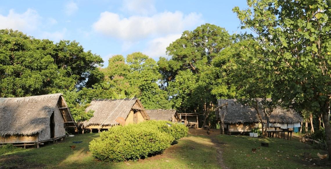 Malekula Village 1 1