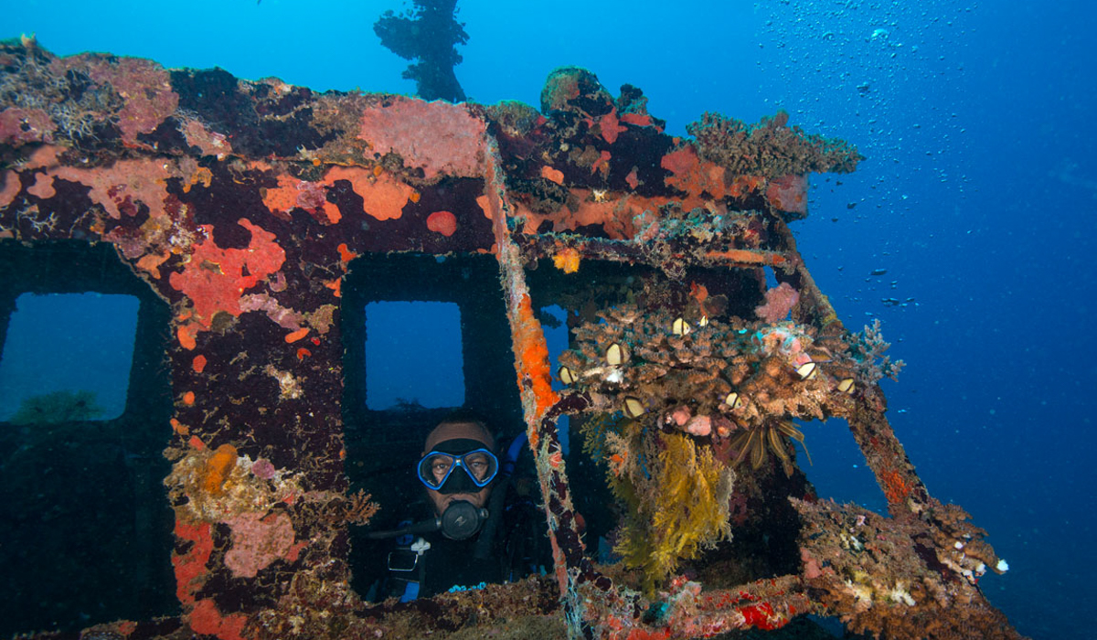 DIving guide 4 days Efate image 2