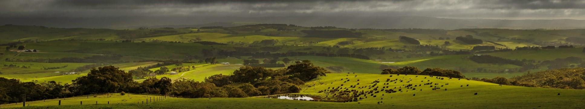 Fleurieu Hills