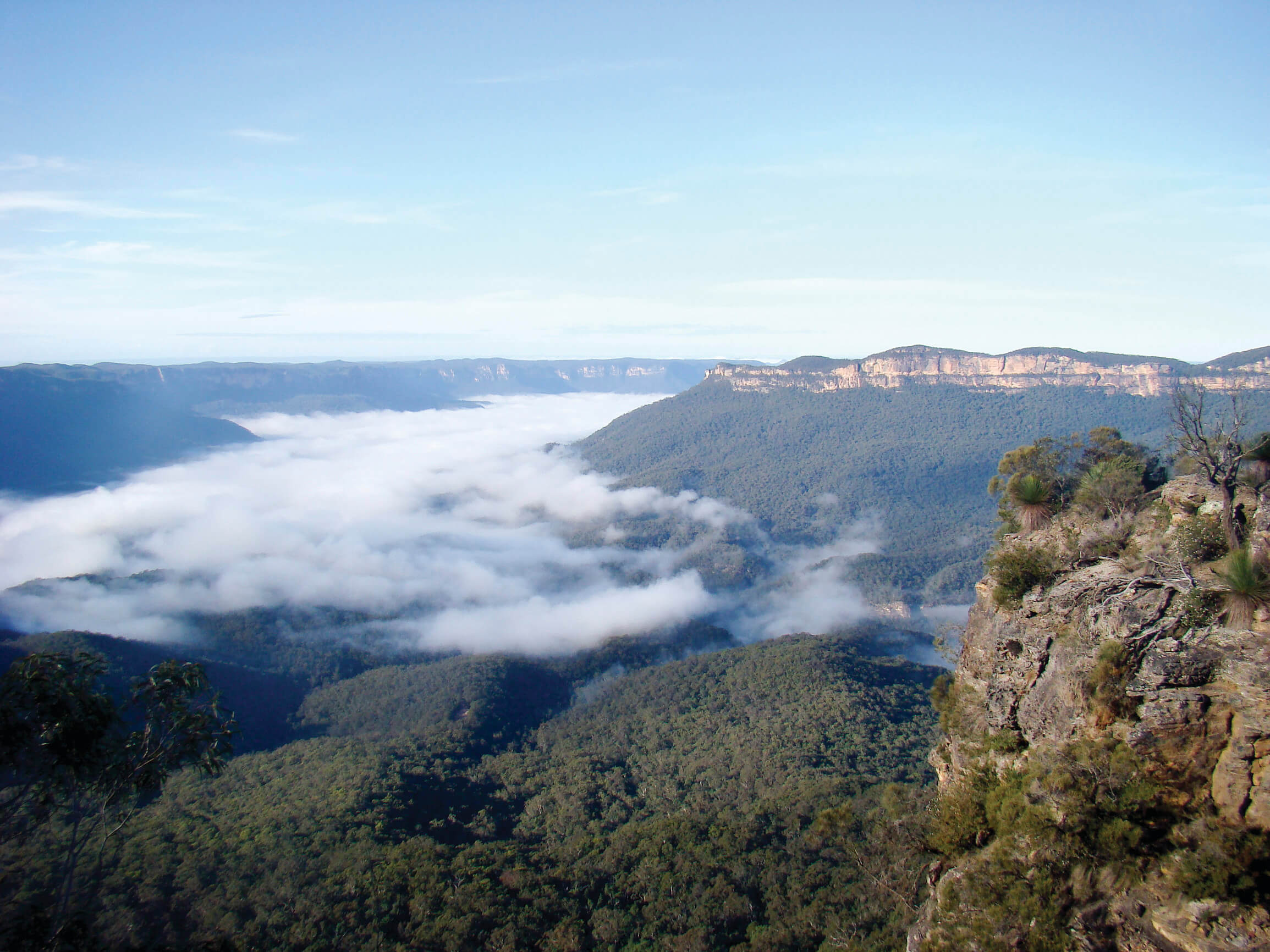 The Greater Blue Mountains World Heritage Area