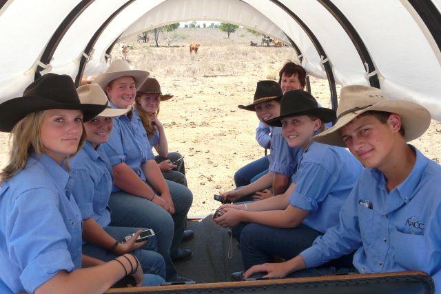 Texas Longhorn Wagon Tour