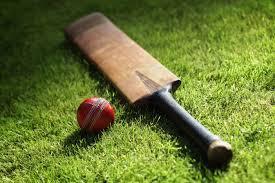 Greenvale Charity Cricket & Family Fun Day