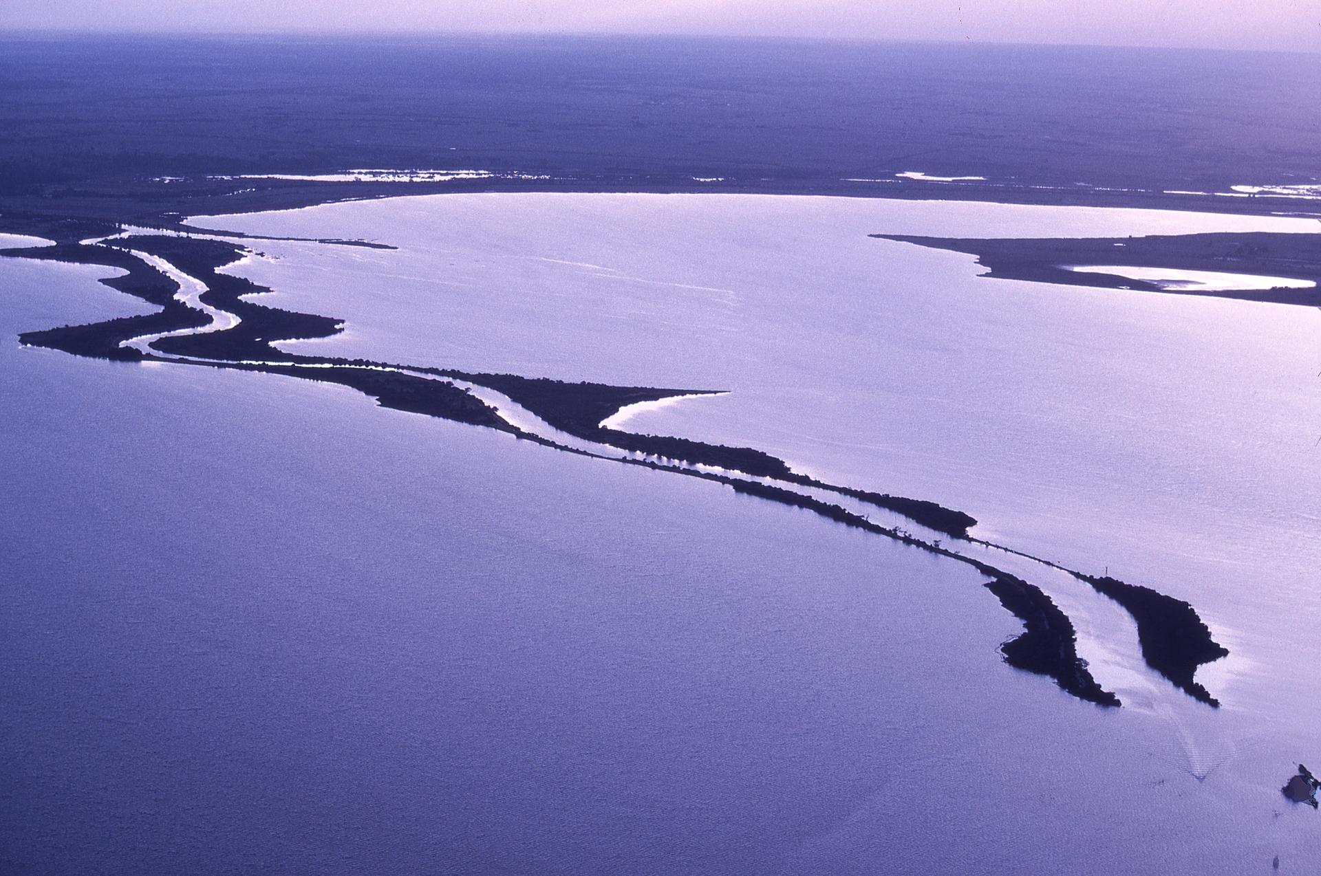 Lake King
