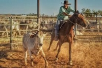 Halls Creek Campdraft & Rodeo
