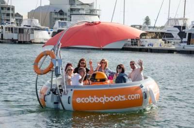 b2ap3_thumbnail_Eco-BBQ-Boats-Mandurah.jpg