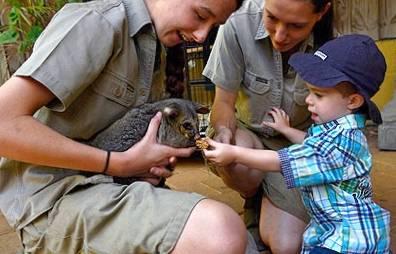 b2ap3_thumbnail_Peel-Zoo-visit-peel_20150609-031816_1.jpg