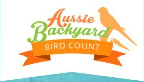 Backyard Aussie Bird Count - Illawarra Birders walk at Killalea