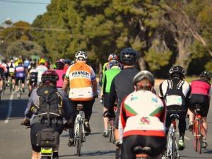 Wine Wheels and Whiting, Clare to Wallaroo Bike Ride