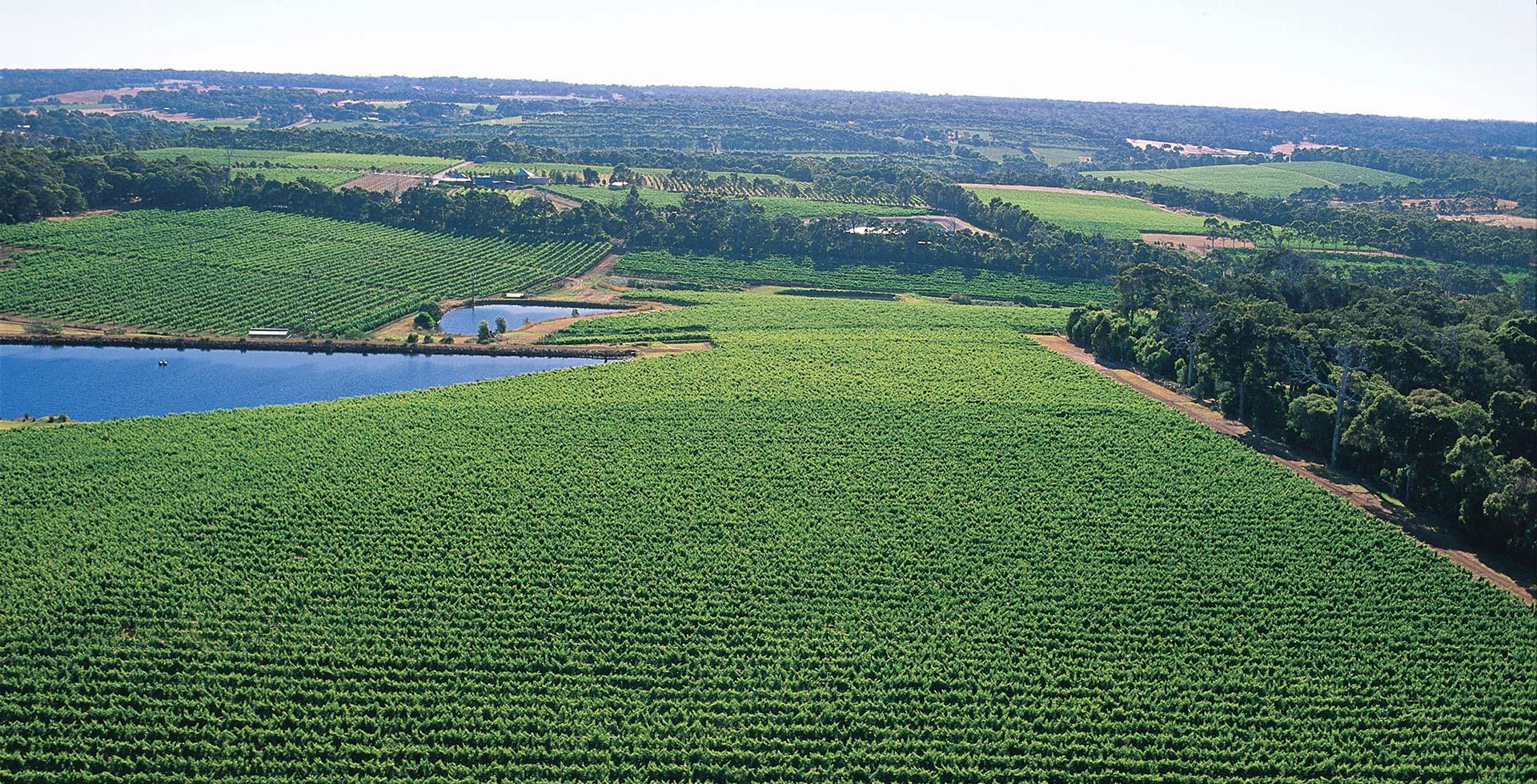 Visit world-class vineyards throughout Margaret River