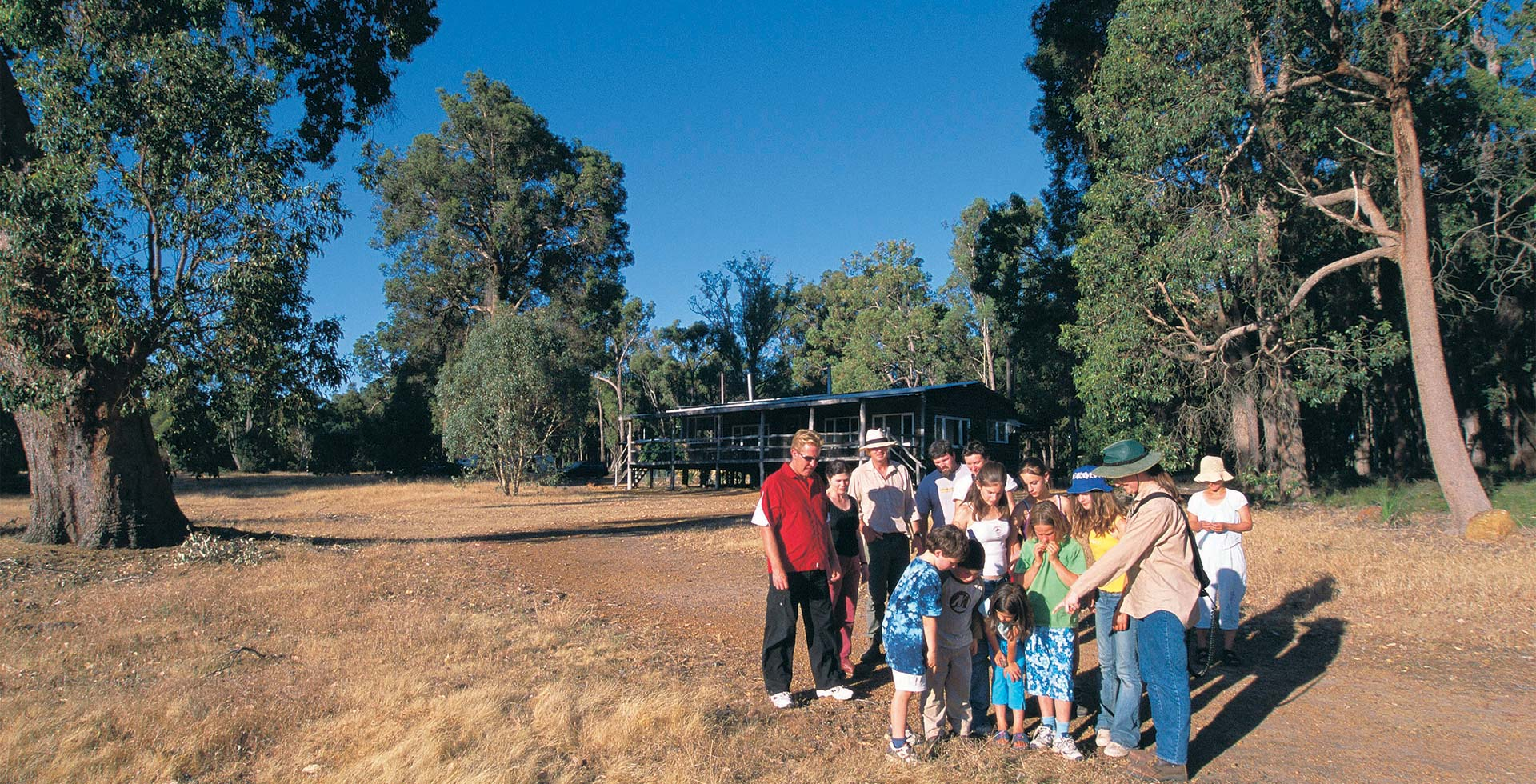 Learn all things nature on an Eco Tour in the Perth Hills