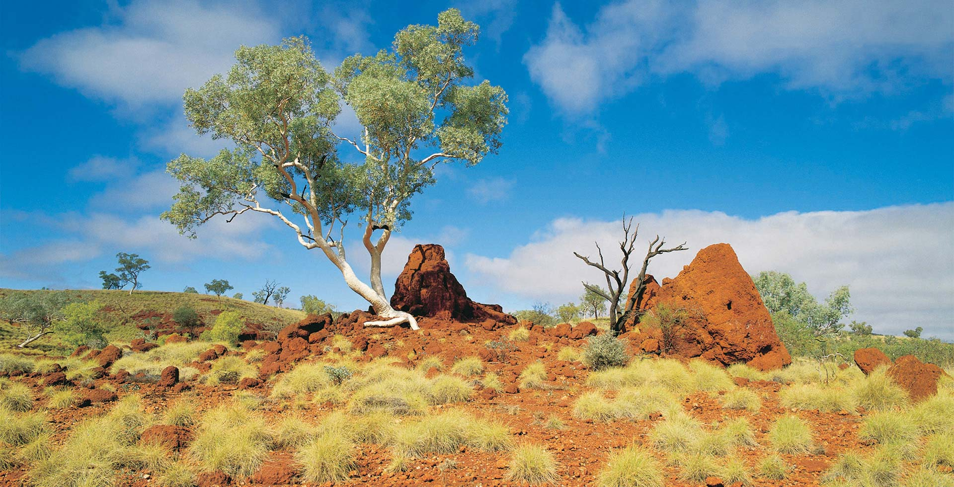 Soak up the simplistic beauty of Port Hedland