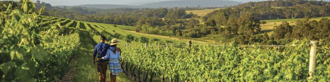 World Class Wines Margaret River